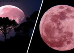 «Розовая луна» поднимется над Землей в Страстную пятницу. Вот что вам надо знать